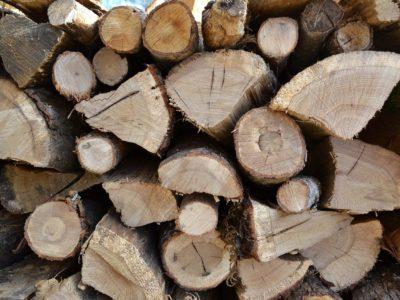 bois chauffage ecologie