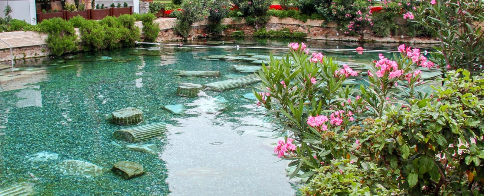 Comment choisir sa piscine ecologique ou naturelle prix co t devis - Piscine ecologique prix ...