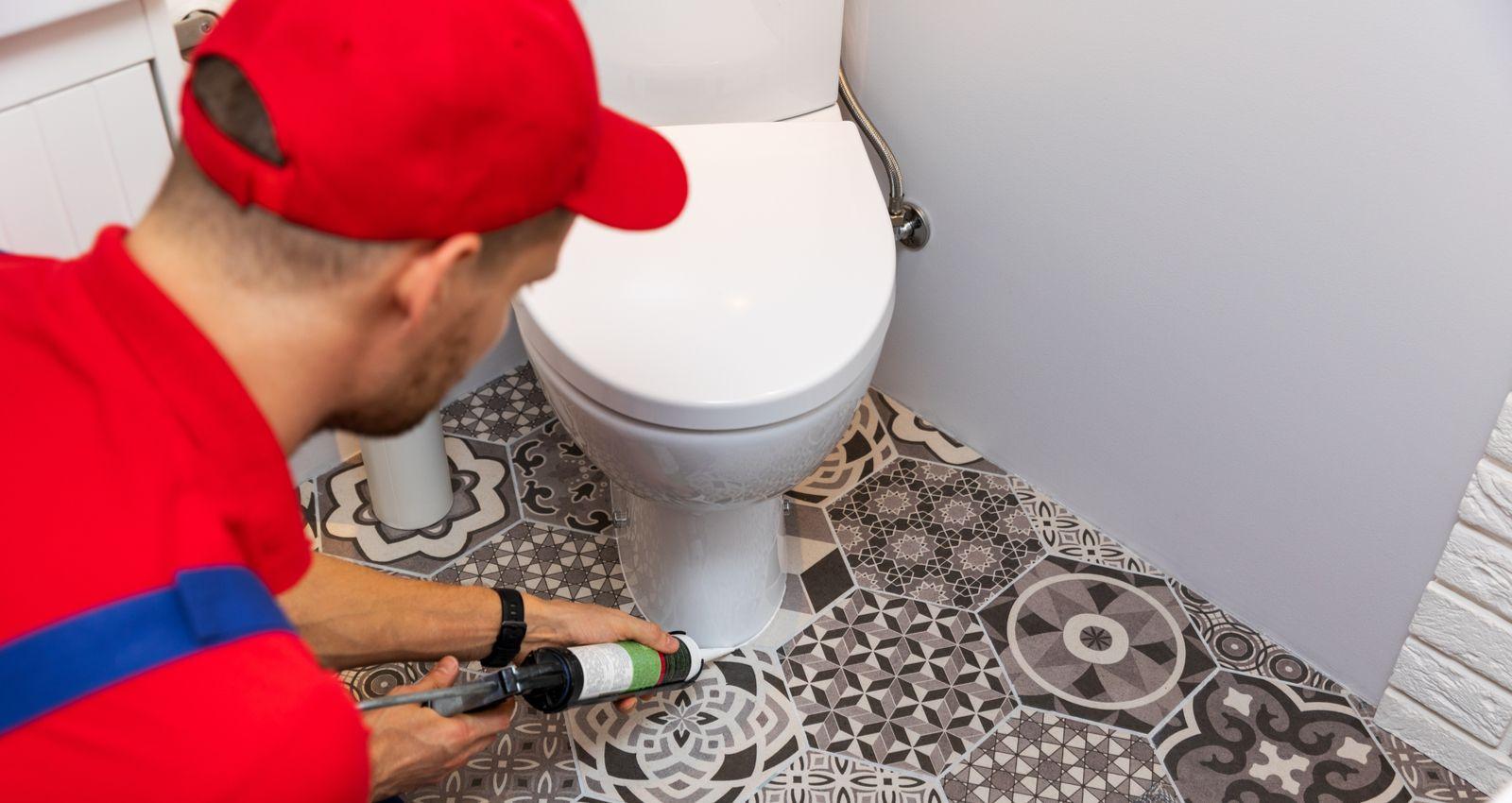 Peinture Pour Les Toilettes comment remplacer, changer, rénover des toilettes ou wc