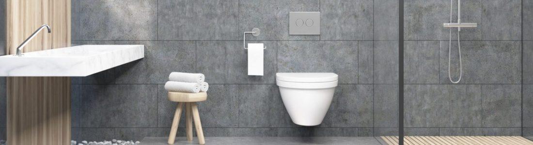 Comment Remplacer Changer Rénover Des Toilettes Ou Wc