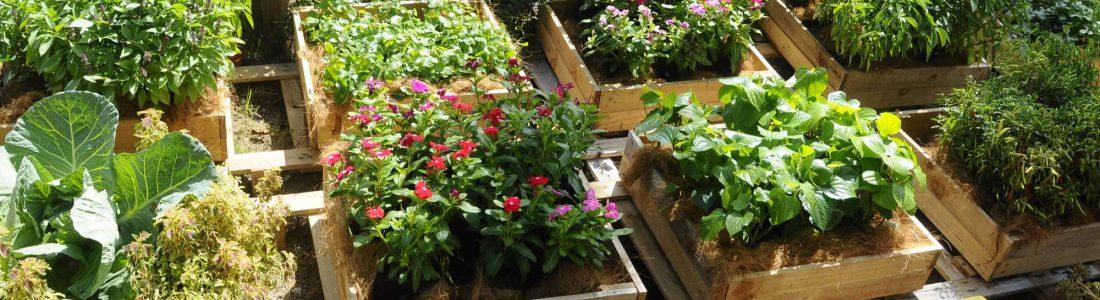 Fabriquer une jardinière