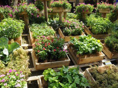 Transformer une palette en bois en jardinière déco