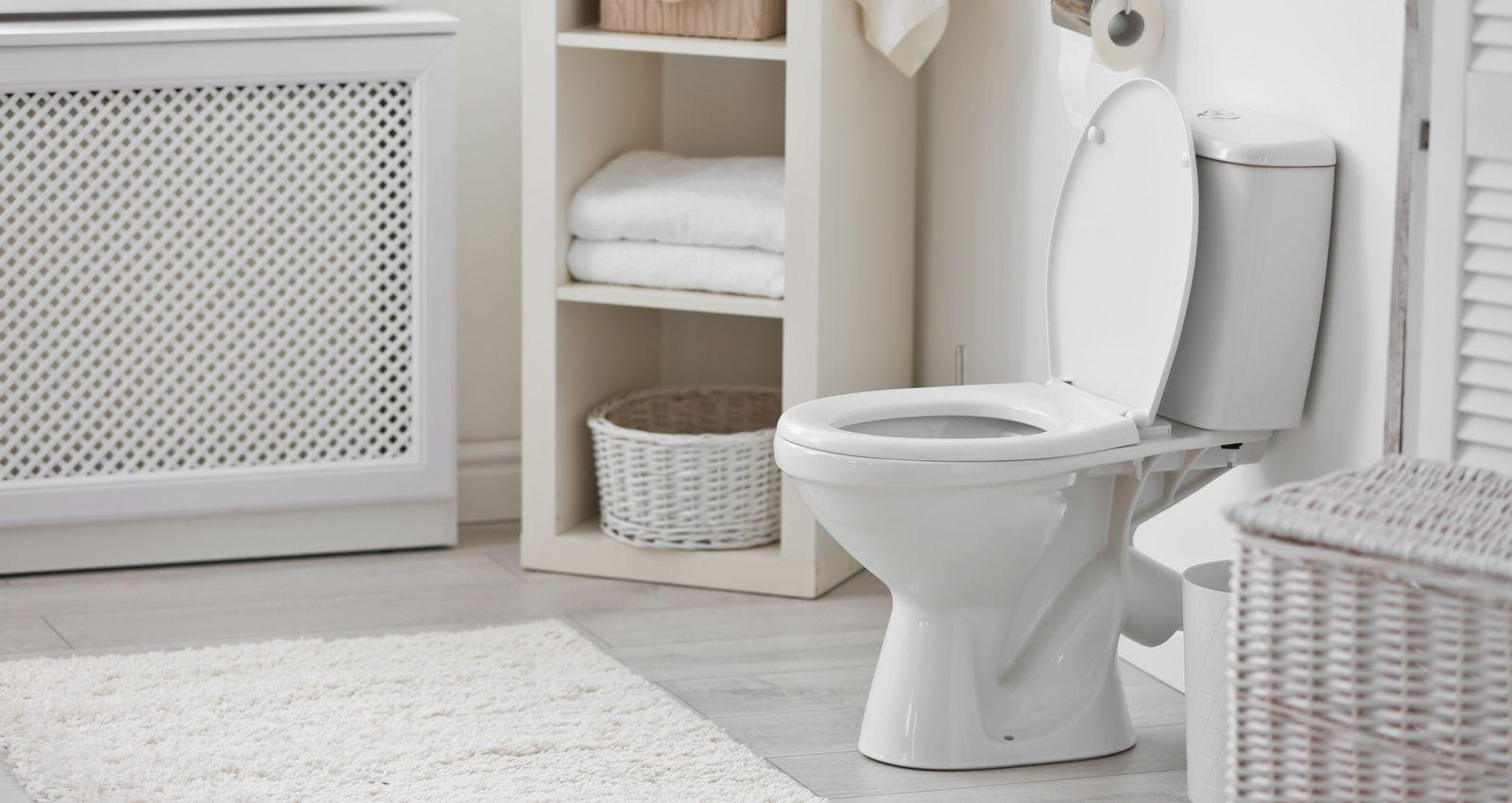 Combien De Wc Dans Une Maison combien coûte l'installation, le montage de toilettes, wc