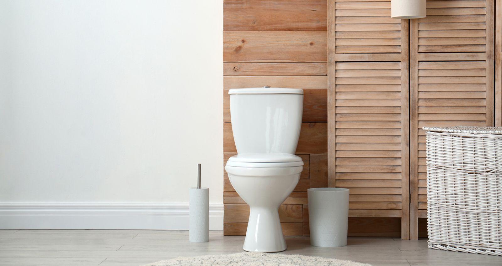 Leroy Merlin Wc Handicapé combien coûte l'installation, le montage de toilettes, wc
